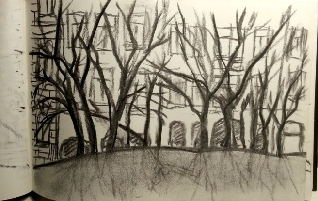 RadkaZKing_CharcoalOnPaper_Trees_withSmudgedRoots